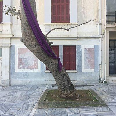 Griechenland, Athen, Baum mit einem Tuch vor Gebäude - p1401m2191383 von Jens Goldbeck