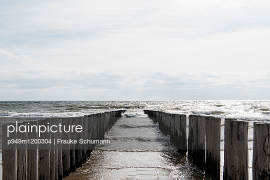 Mole  - p949m1200304 von Frauke Schumann