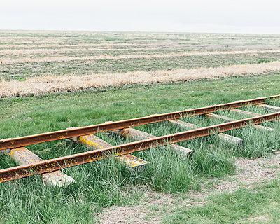 Gleise im Gras - p1085m876973 von David Carreno Hansen