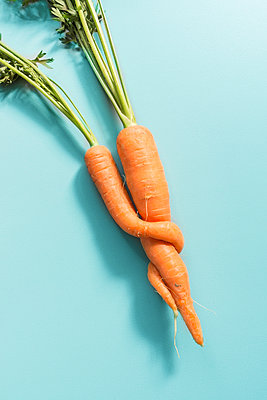 Close-up of carrots - p305m1586702 by Dirk Morla