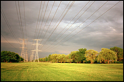 Power lines and trees under storm clouds in summer - p3720281 by James Godman