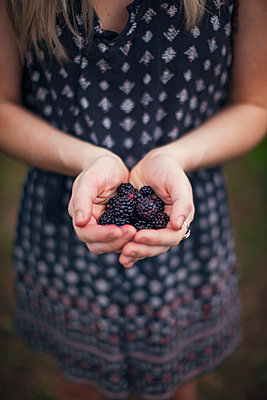 Overhead view of woman holding harvested blackberries in cupped hands - p1166m1154033 by Cavan Images