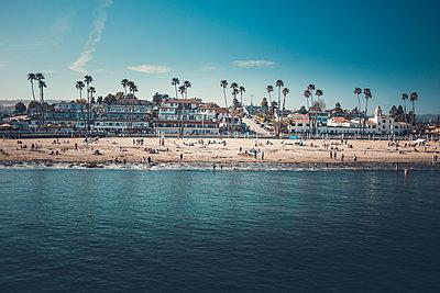Palm and Beach - p1290m1111071 by Fabien Courtitarat