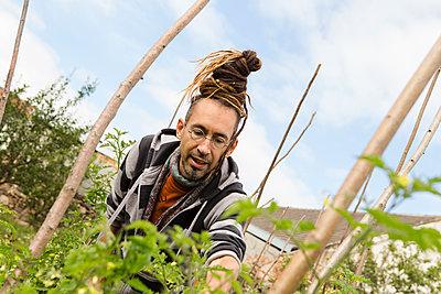 Austria, Schiltern, Alternative gardener at work - p300m2213701 by Dieter Schewig