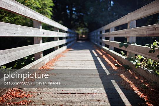 p1166m1150997 von Cavan Images