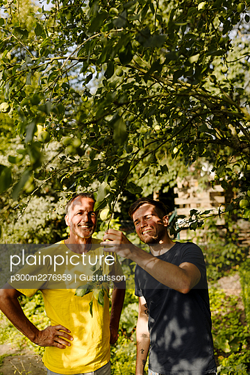 Smiling son examining branch by father while standing under tree in back yard - p300m2276959 by Gustafsson
