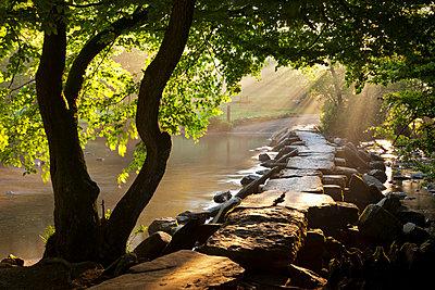 Misty summer morning by Tarr Steps clapper bridge - p8714125 by Adam Burton