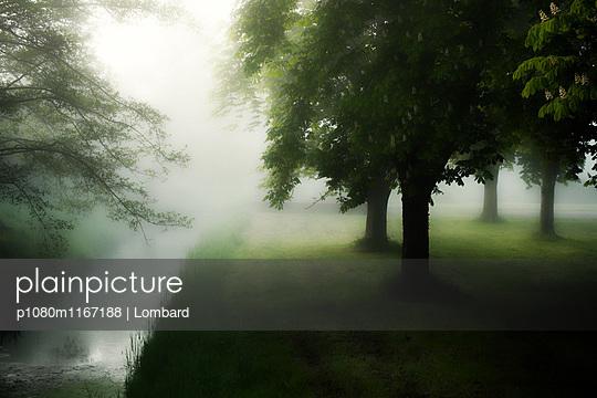 p1080m1167188 von Lombard