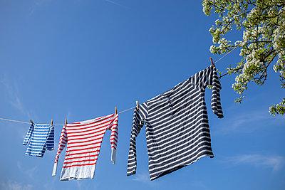 Wäsche an Wäscheleine - p1156m2086958 von miep
