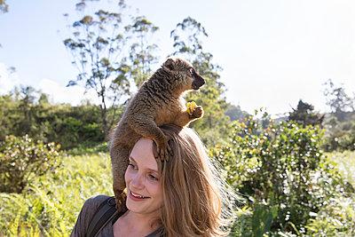 essender Lemur auf Kopf - p1272m1515593 von Steffen Scheyhing