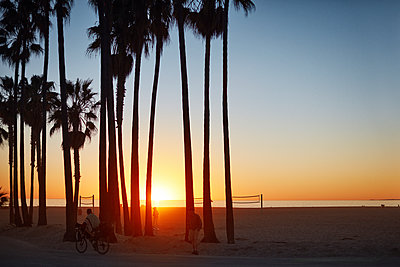 USA, California, Los Angeles, Palms by Venice Beach at sunset - p352m1349145 by Fredrik Ottosson