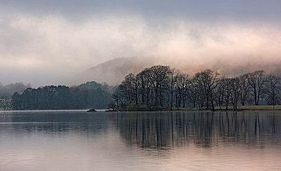 Fog rolling over rural landscape - p42918256 by Henn Photography