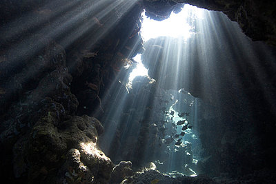 Underwater cave - p4298028 by Zac Macaulay