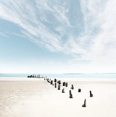Verwitterte Pfähle am Ostende der ostfriesischen Insel Wangerooge - p1162m2115383 von Ralf Wilken