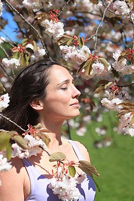 Kirschblüten-Duft - p045m1171645 von Jasmin Sander