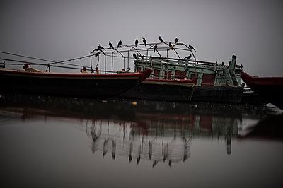 Varanasi - p1007m1060046 by Tilby Vattard