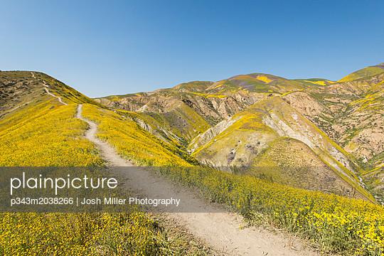 p343m2038266 von Josh Miller Photography