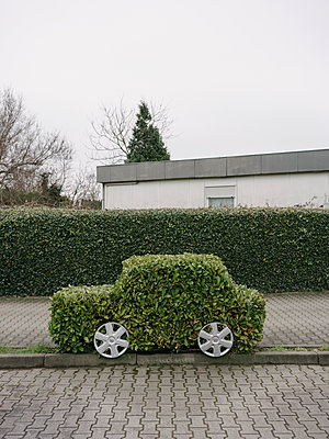 Creative hedge clipping, eco car in front of bungalow - p1085m2181649 by David Carreno Hansen