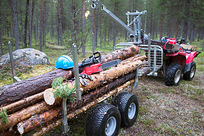 Logs on trailer in forest - p312m1495493 by Fredrik Ludvigsson