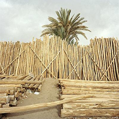 Holzhandel - p1021m2134471 von MORA