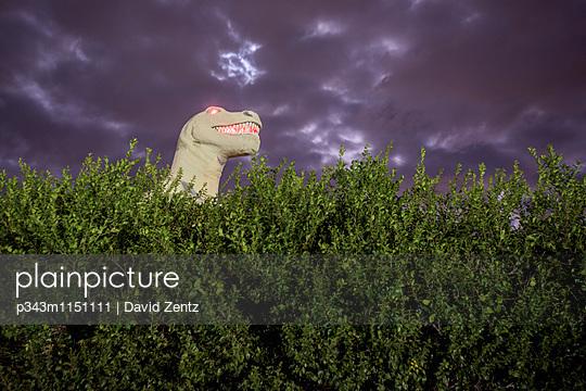 p343m1151111 von David Zentz
