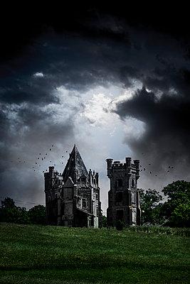 Castle - p248m1034107 by BY