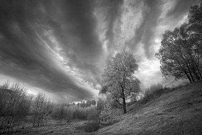 Landschaft in Russland - p1653m2232278 von Vladimir Proshin