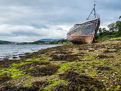 UK, Scotland, Highland, Loch Linnhe, ship wreck at the beach of Corpach - p300m1537411 by Stefan Schurr