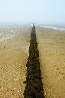 Strandmauer im Nebel - p3580362 von Frank Muckenheim