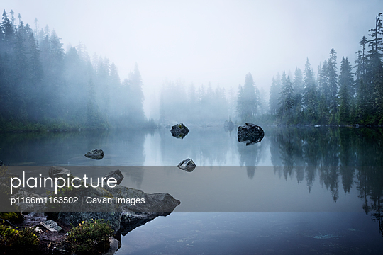 p1166m1163502 von Cavan Images