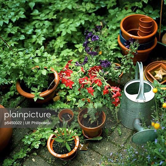 Sommerblumen - p5450022 von Ulf Philipowski