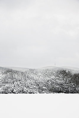 Winter - p1006m891469 von Danel