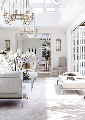 Orchids on table under glass ceiling chandeliers in conservatory extension of London home - p349m790413 by Brent Darby
