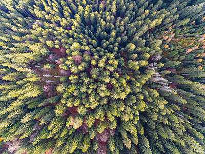 Germany, Bavaria, Lower Bavaria, Bavarian Forest, aerial view - p300m1563035 by Fotofeeling
