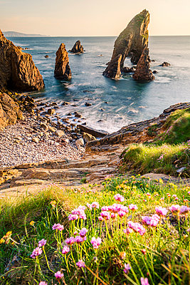 Crohy Head, County Donegal, Ulster region, Ireland, Europe. Sea arch stack and coastal cliffs. - p651m2007317 by Marco Bottigelli