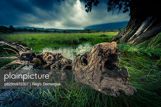 Schlechtes Wetter beim Pic Saint-Loup - p829m972307 von Régis Domergue