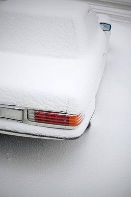 Snow - p4640033 by Elektrons 08