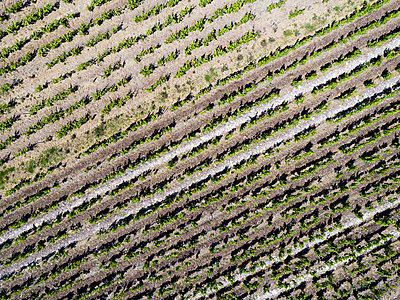 Champagne vineyards View from drone  - p590m2191530 by Philippe Dureuil