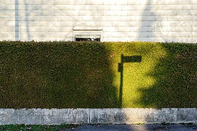 Schattenspiel auf Gartenhecke - p267m1165842 von Ingo Kukatz