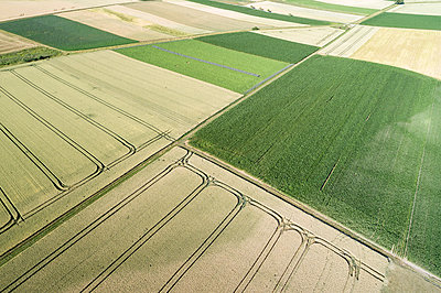 Germany, Bavaria, Drone view of patchwork fields in summer - p300m2167008 by Martin Rügner