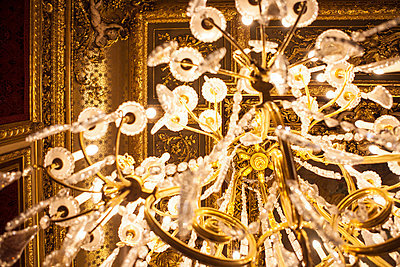 Chandelier - p1129m973172 by ROBINSIMON