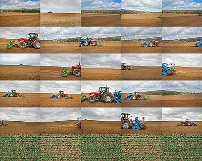 Collage, Feldarbeit - p915m2022161 von Michel Monteaux