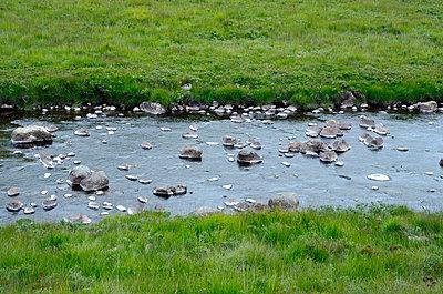 Steiniger Bach auf Arran Island - p1562m2158201 von chinch gryniewicz