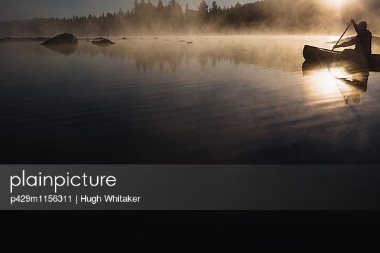 p429m1156311 von Hugh Whitaker
