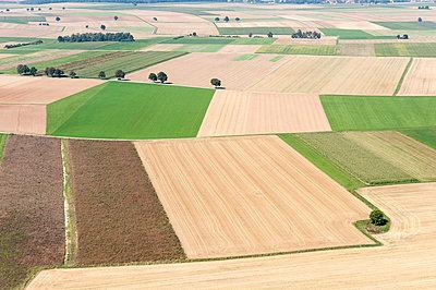 Landwirtschaftliche Landschaft - p1079m885278 von Ulrich Mertens