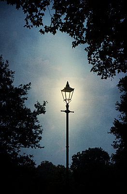 Illuminated Lamppost with Trees  - p1248m1492064 by miguel sobreira