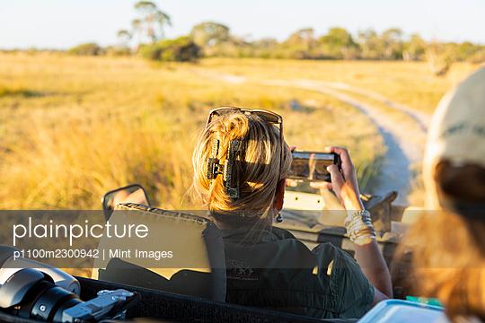 Adult woman taking smart phone image from safari vehicle, Okavango Delta, Botswana. - p1100m2300942 by Mint Images