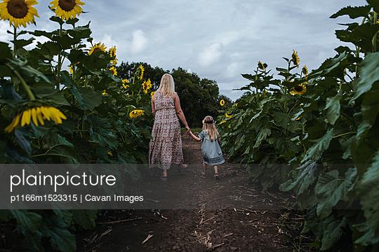 p1166m1523315 von Cavan Images