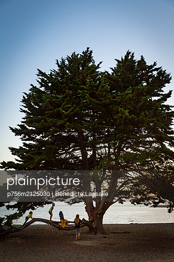 Children in front of a tree - p756m2125030 by Bénédicte Lassalle