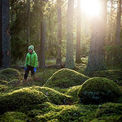 Boy walking in forest - p312m1407606 by Fredrik Schlyter